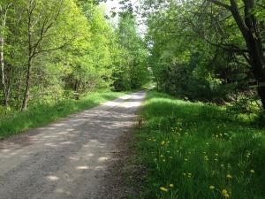 gravel-road-380915_640